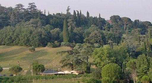 Tozzoni Public Park