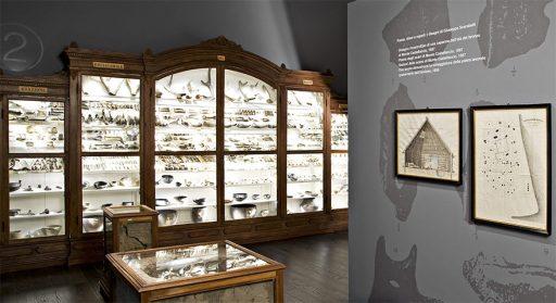 Museo Giuseppe Scarabelli